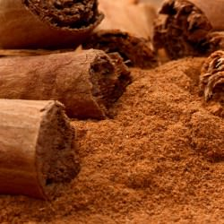 Органски Цејлонски цимет во прав (рефус 100 гр)