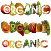 Органска храна